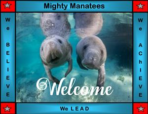 Welcome image of Manatees